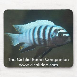 The Cichlid Room Companion - Metriaclima zebra Mouse Mat