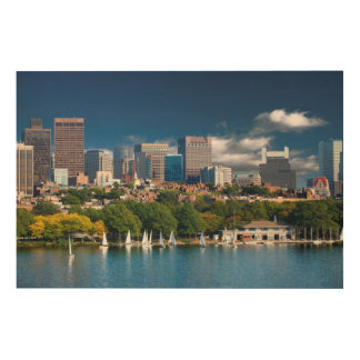 The city of Boston and Charles river Wood Wall Art