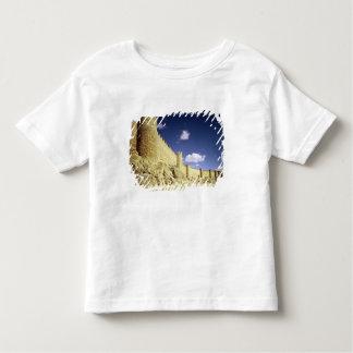 The city walls toddler T-Shirt
