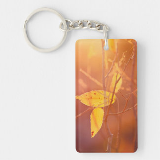 The colors of autumn key ring