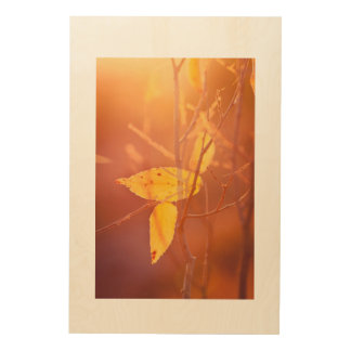 The colors of autumn wood wall decor