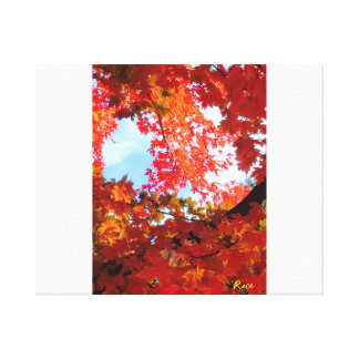 The Colors of Fall in Omaha 2-original digital art Gallery Wrap Canvas