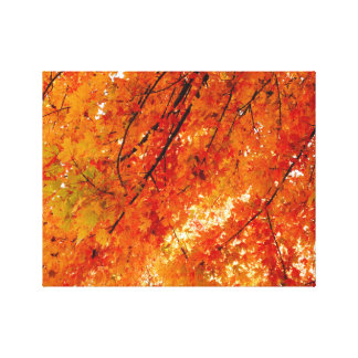 The Colors of Fall in Omaha  Original Digital Art Canvas Print