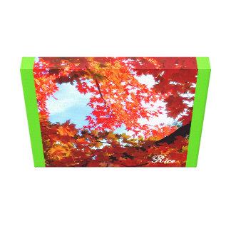 The Colors of Fall in Omaha  Original Digital Art Canvas Print