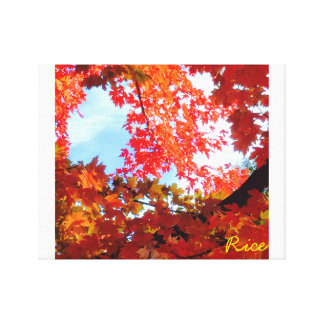 The Colors of Fall in Omaha  Original Digital Art Stretched Canvas Print
