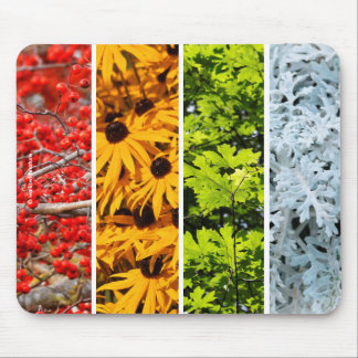The Colors of the Changing Seasons Mouse Pad