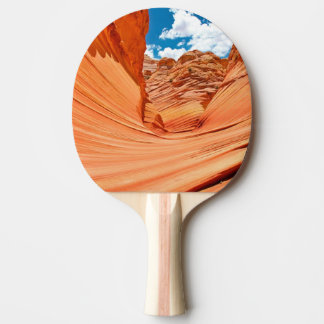 The Colors of the Wave Ping Pong Paddle