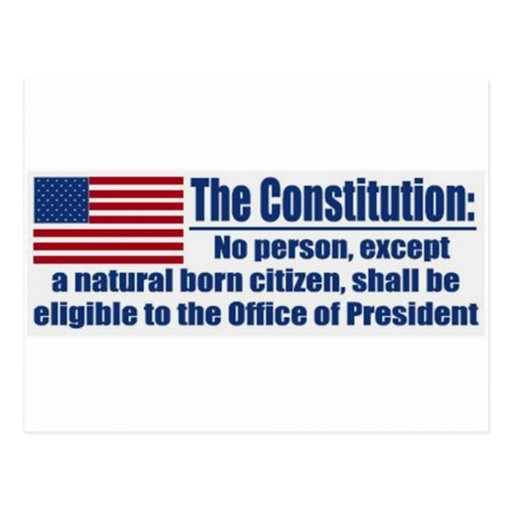 The Constitution Says.... Post Card