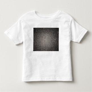The core of the globular cluster Omega Centauri Toddler T-Shirt