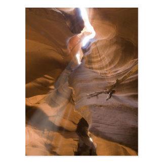 The Corkscrew in Upper Antelope Canyon, Navajo Postcard