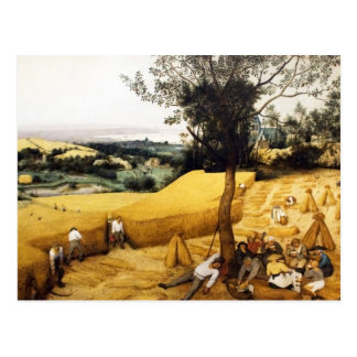 The Corn Harvest - 1565 Postcard