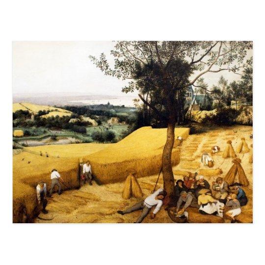The Corn Harvest - 1565 Postcard
