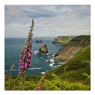 The Cornish Coast Custom Announcements