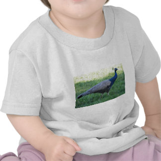 The Country Life......Where Living Really Begins Tshirts