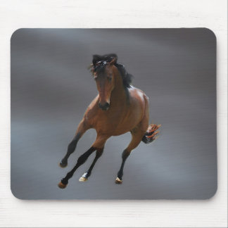 The cowboy horse called Riboking Mousepads