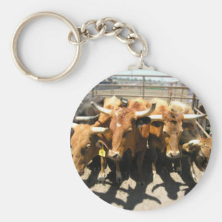 The cows came home basic round button key ring