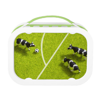 The cows playing soccer lunch box