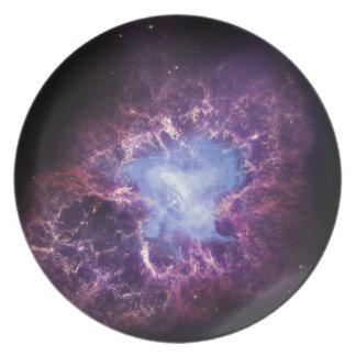 The Crab Nebula Plates