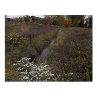 The Creek Postcard