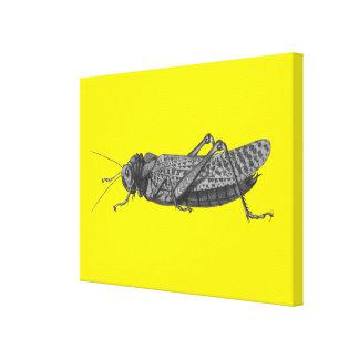 The Cricket Canvas Prints