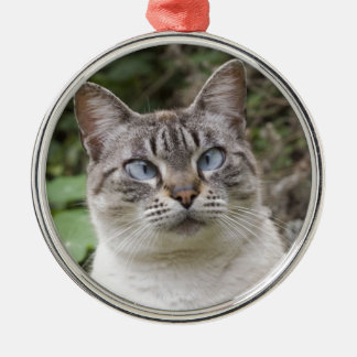 The cross eyed cat christmas ornament