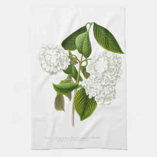 The Crumpled Gueldres Rose Tea Towel