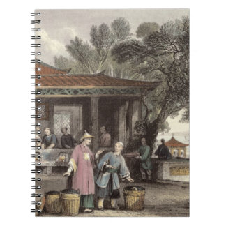 The Culture and Preparation of Tea, from 'China in Notebook