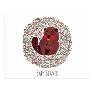 The Cute Baby Beaver Post Cards