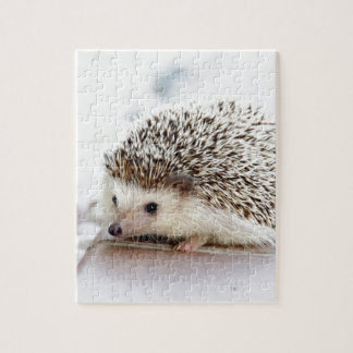 The Cute Baby Hedgehog Jigsaw Puzzle