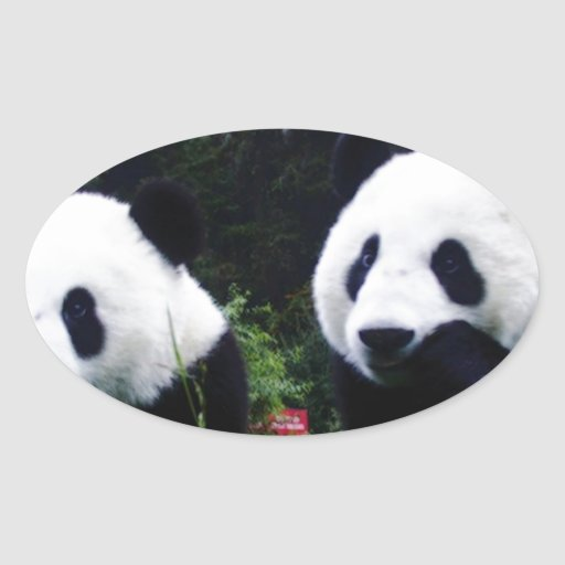 The Cute Panda Couple Sticker