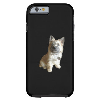 The Cutest Cairn Terrier Ever!  Cuter than Toto! Tough iPhone 6 Case