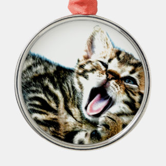 The cutest kitten ever!!! christmas ornament