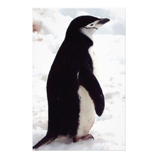 The Cutest Penguin, Ever Stationery