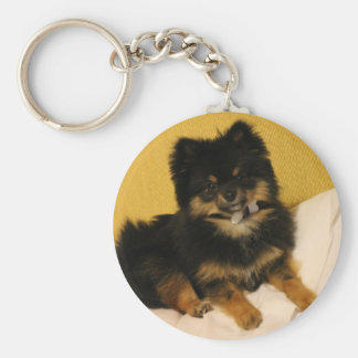The cutest Pomeranian Key Chains