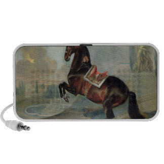 The dark bay horse 'Valido' iPhone Speakers