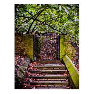 The Deans Steps Postcard