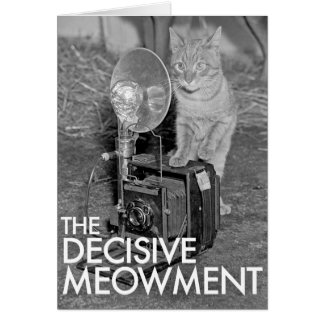 THE DECISIVE MEOWMENT CARD
