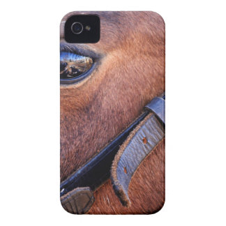 The depth iPhone 4 Case-Mate case