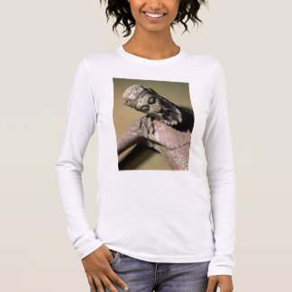 The Descent from the Cross, 12th century (polychro Long Sleeve T-Shirt