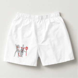 THE DEVIL IN YOU BOXERS