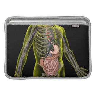 The Digestive System MacBook Sleeve
