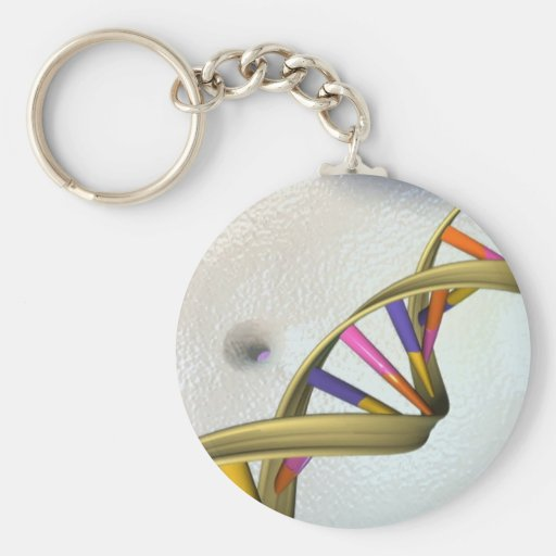 The DNA Collection Key Chains