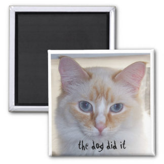 THE DOG DID IT SQUARE MAGNET