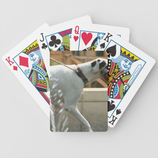 The Dog Bicycle Poker Deck