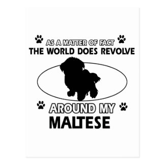 The dog revolves around my maltese postcard