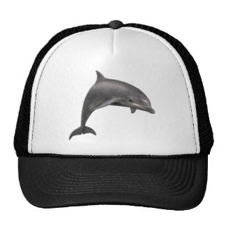THE DOLPHINS LEAP CAP