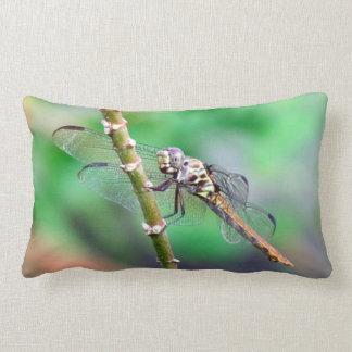 The Dragon Pillow