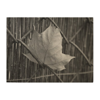 The Dry Maple Leaf - Wood Wall Art Wood Print