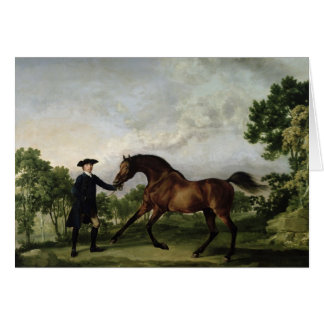 "The Duke of Ancaster's bay stallion ""Blank"" Card"