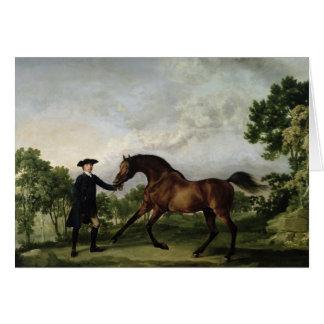 "The Duke of Ancaster's bay stallion ""Blank"" Greeting Card"